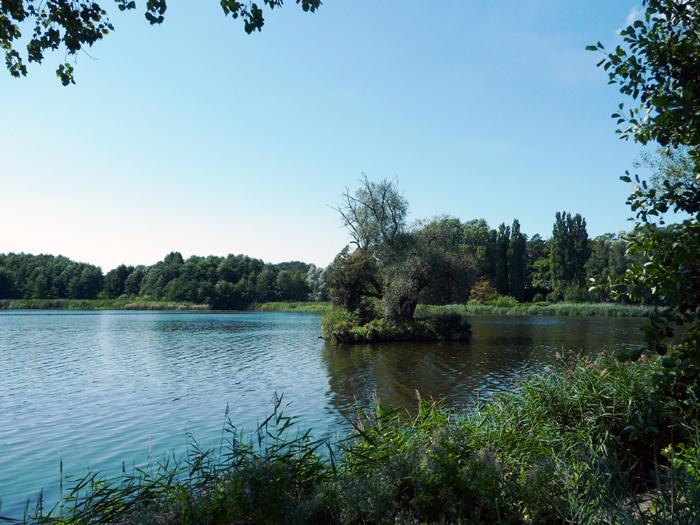 Usedom reisef hrer das fischerdorf loddin auf der insel for Ferienwohnung kolpinsee