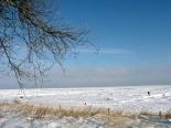 Winterlicher Strand von Kölpinsee