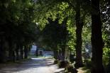 Dorfstrasse von Mellenthin - © Jörg Bunke/ www.lichtblende.de
