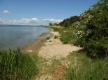 Achterwasserküste der Halbinsel Gnitz - © Karl-Heinz Liebisch / pixelio.de