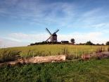 Windmühle bei Benz